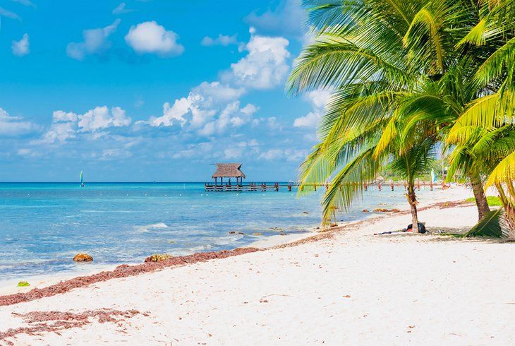cheap tropical vacations cozumel